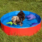 Dog Cool Pool