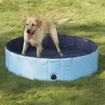 Splash Dog Pool - Large