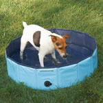 Splash Dog Pool - Small